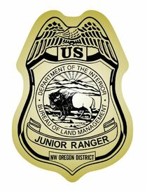 Junior Ranger Badge Stickers